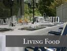 livingfoodvillaraffaela